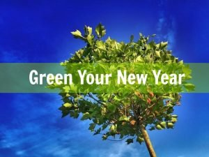green-company-bank-vogue
